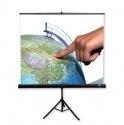 Ekran ręcznie rozwijany na trójnogu AVtek Tripod 200x200 cm (1:1) z ramkami