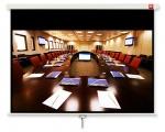 Ekran ścienny AVTEK Business 270x169 (16:10)