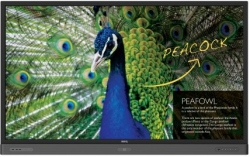 Monitor interaktywny BenQ RP6501K 4K UHD 65